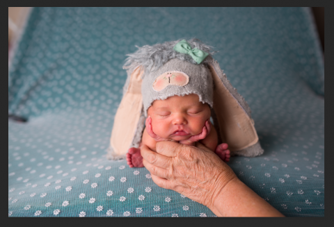 Newborn froggy pose| newborn safety|froggy pose photography ideas| froggy with hands