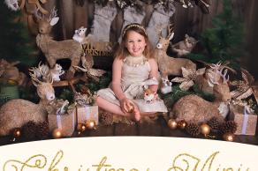 gorgeous christmas photo, family photos melbourne